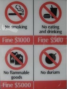4789143-Fine_anyohne_Singapore