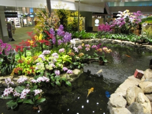 orchid_garden_610x458